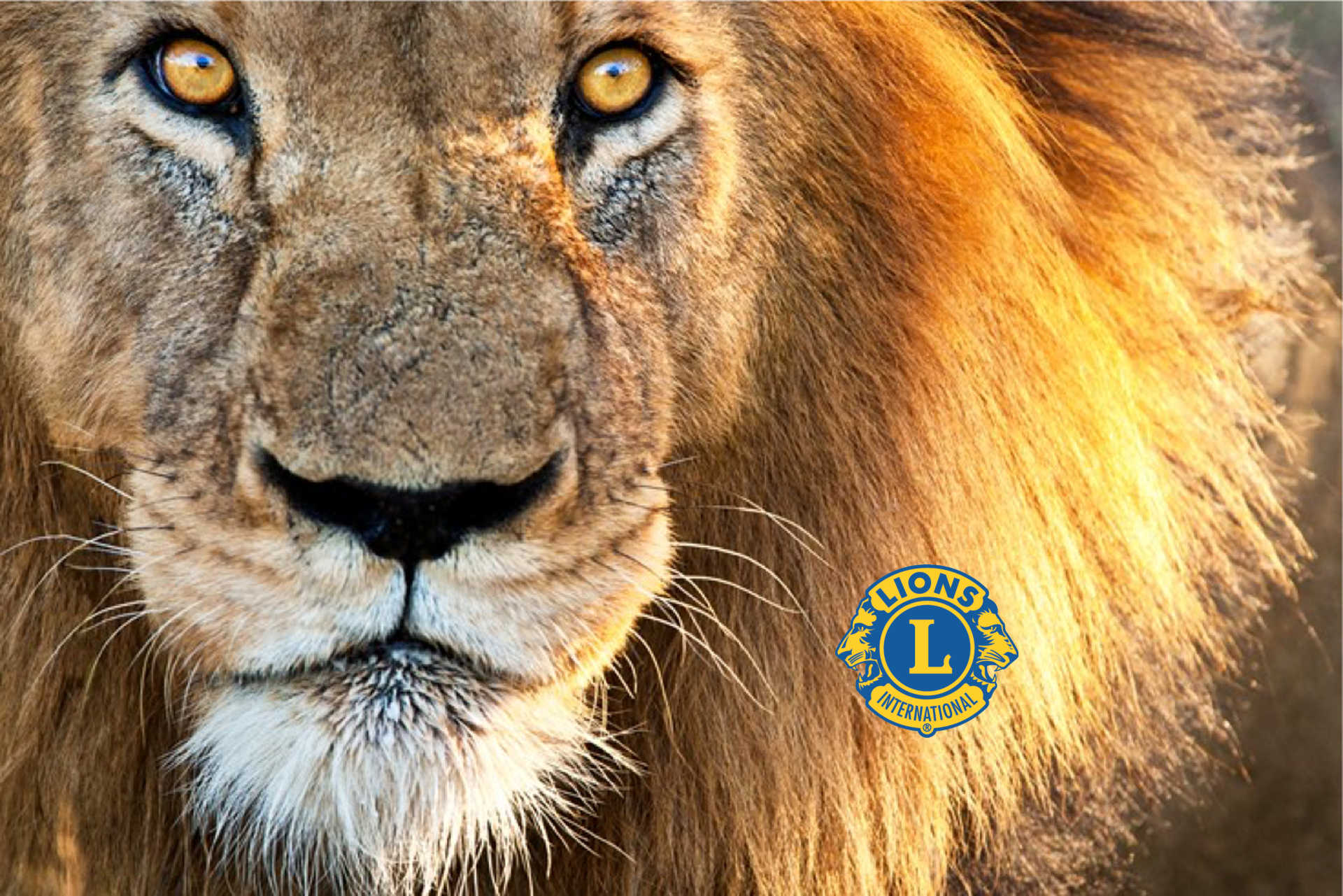 Featherstone Lions Club